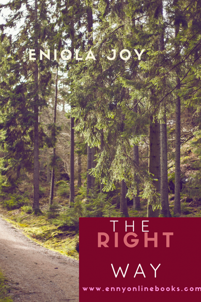 https://www.ennyonlinebooks.com/wp-content/uploads/2019/05/BOOK-COVER-BLOG.png